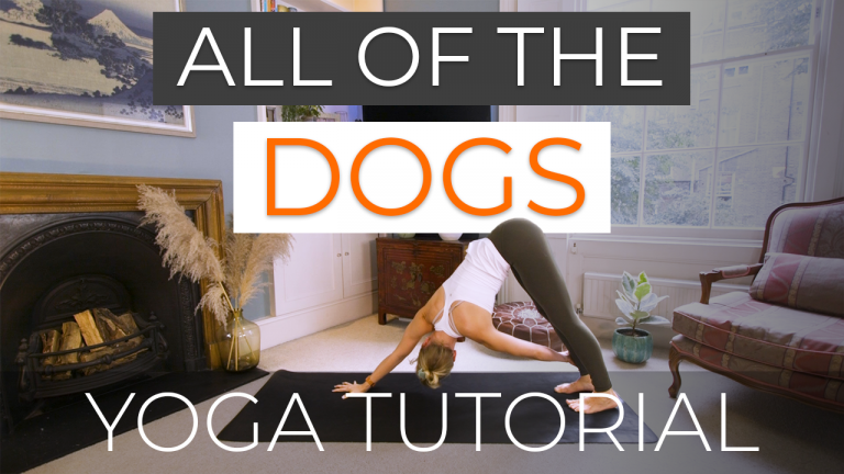 All of the Dogs (Down and Up Dog Yoga Tutorial)