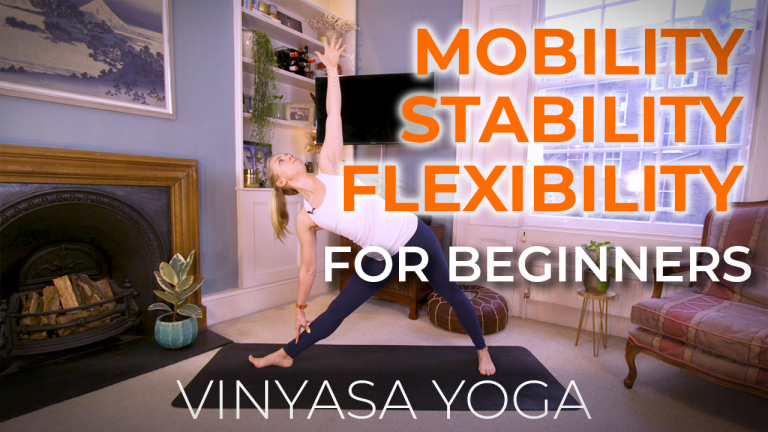 Mobility, Stability, and Flexibility for Beginners